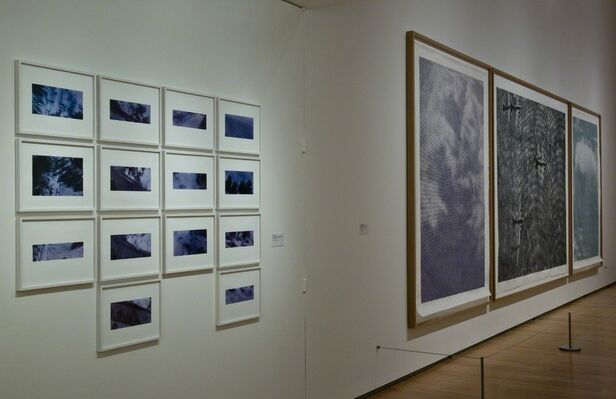 Christiane Baumgartner: Another Country, installation view