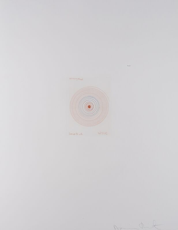 Damien Hirst, 'Spinning Wheel (from In a Spin, The Action of the World on Things I)', 2002, Print, Etching printed in colours, Forum Auctions