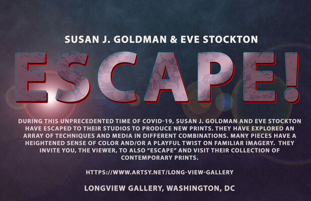 ESCAPE - Susan J. Goldman and Eve Stockton, installation view