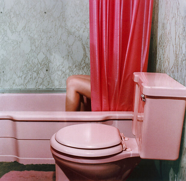 Sandy Skoglund, 'Knees in Tub from Reflections in a Mobile Home', 1977