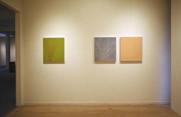 Tomas Nakada - Migrations, installation view