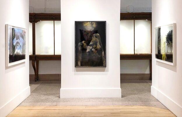 FOCUS - Yoakim Bélanger, installation view