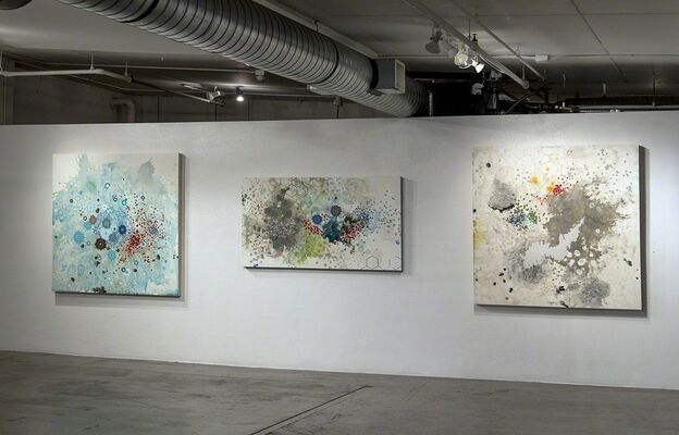 Natural Occurrences, installation view