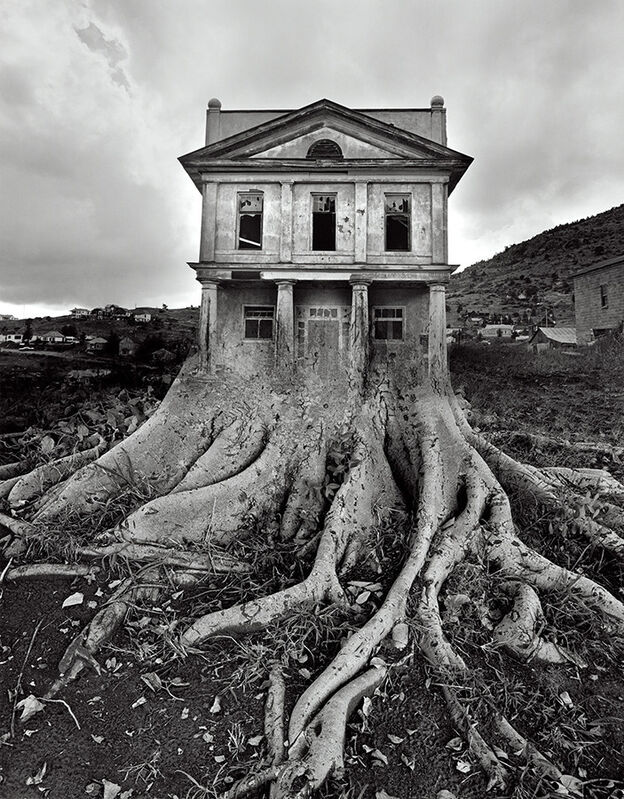 Jerry Uelsmann, 'Untitled, 1982', 1982, Photography, Silver Gelatin Print, Pictura Gallery