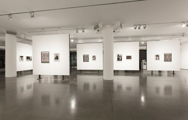 TOTAL EXCESS, installation view