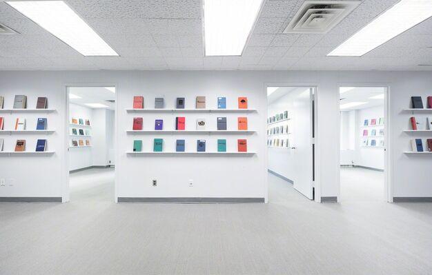 FDIC Insured, installation view