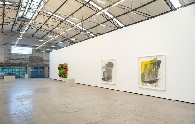 Nuno Ramos: Sol a pino, installation view