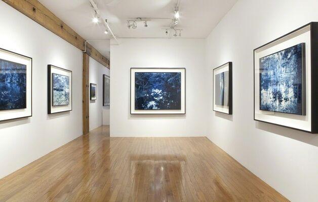 YOJIRO IMASAKA: Blue Bayou, installation view