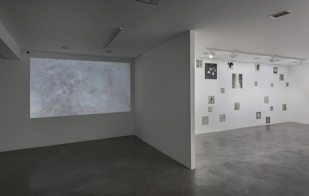 Chance and Necessity, installation view