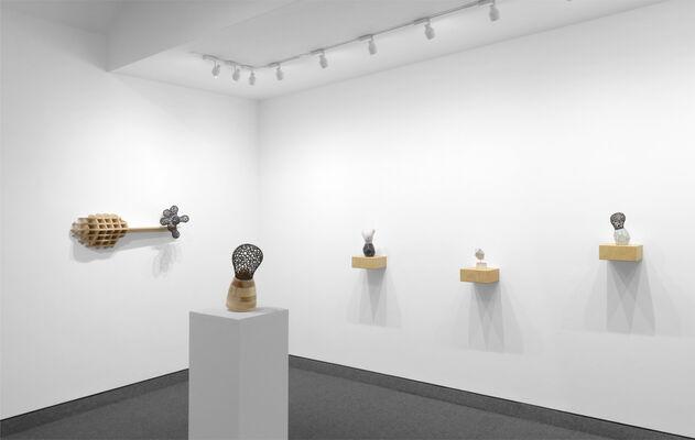 POLYSEMY: Michael Beatty, installation view