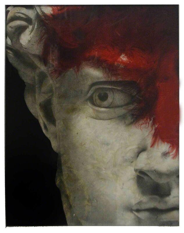 Daniel Gastaud, 'David', 2017, Mixed Media, Original feather composition under Plexiglass, Eden Fine Art