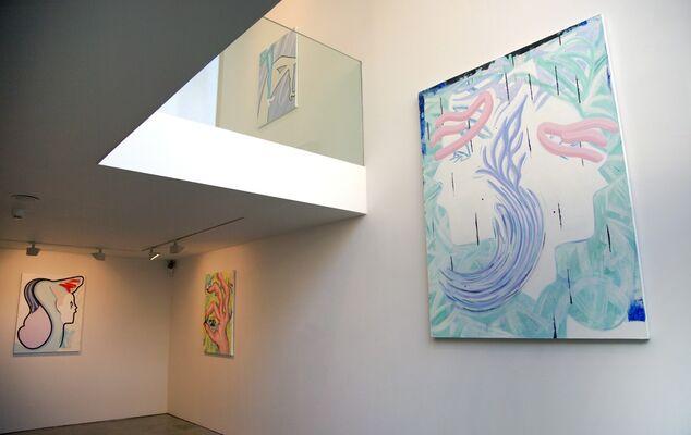 Hannah Bays: Desire Peaks, installation view