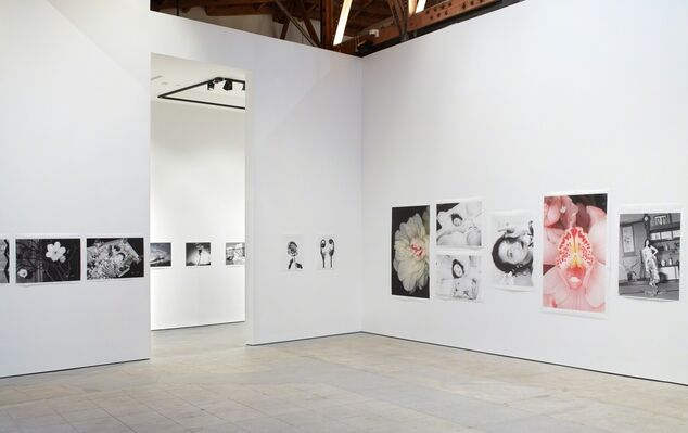 Hana Jinsei (Flower - Life) | Solo Exhibition of Nobuyoshi Araki, installation view