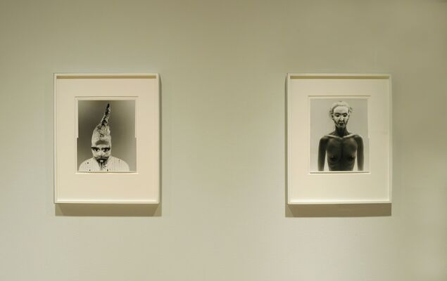 Tono Stano: White Shadow, installation view