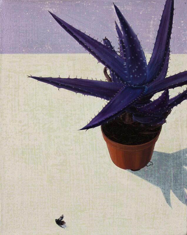 Tristan Pigott, 'Save The Cacti', 2015, Painting, Oil on linen, Cob