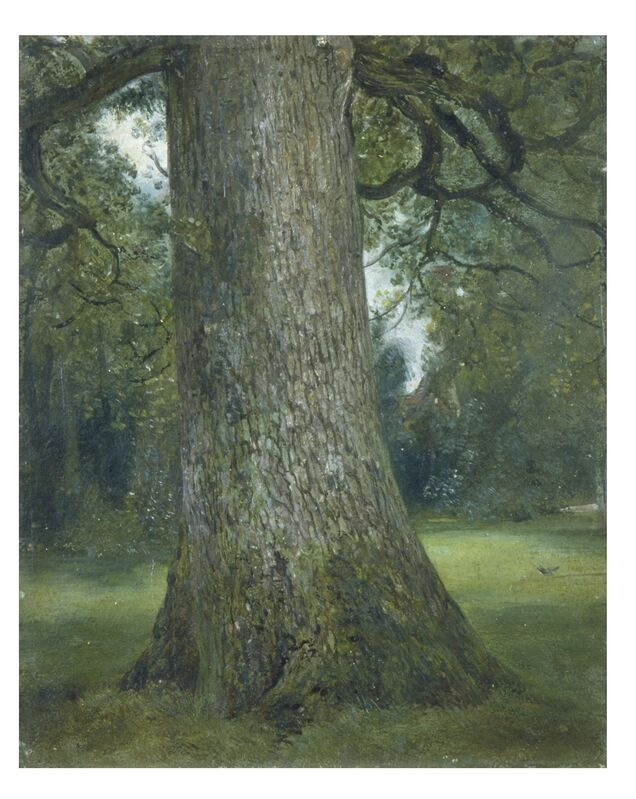 John Constable, 'Study of the Truck of an Elm Tree', ca. 1824, Painting, Oil on paper, Victoria and Albert Museum (V&A)