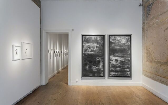 Dark Deep Darkness and Splendor, installation view