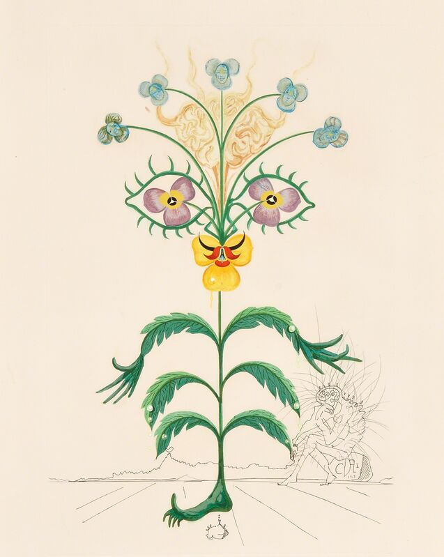 Salvador Dalí, 'Pensée (Viola Cogitans)', 1968, Mixed Media, Mixed media with engraving and pochoir on cream Arches paper with watermark, Skinner