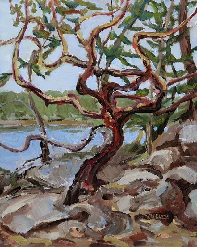 Terrill Welch, 'Shapely Arbutus Tree', 2021, Painting, Acrylic on gessobord, Terrill Welch Gallery