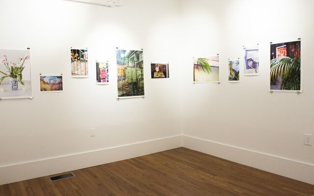 Kenneth Dunne - Ripe Bananas, installation view