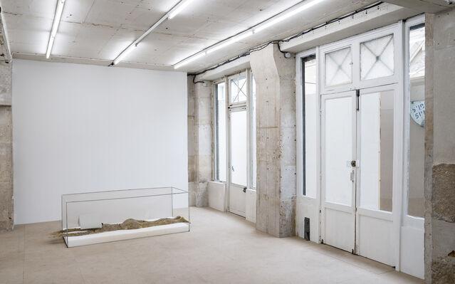 Guillaume Leblon, 'Les Nouveaux Anges', installation view