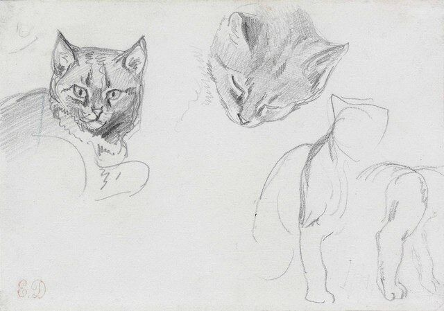 eugène delacroix two studies of a cat s head with subsidiary