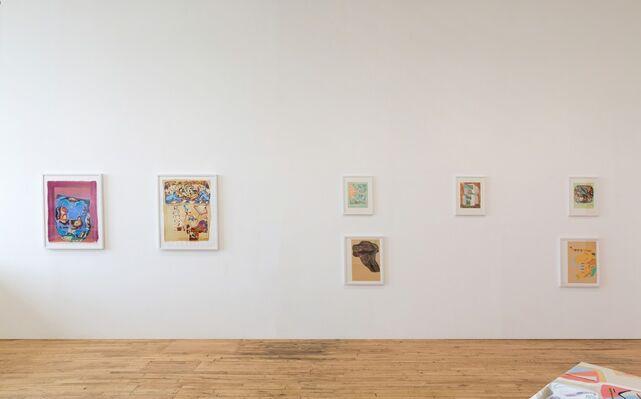 Nancy Ford, installation view