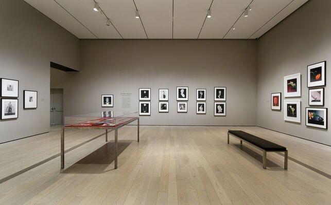 Robert Mapplethorpe: The Perfect Medium, installation view