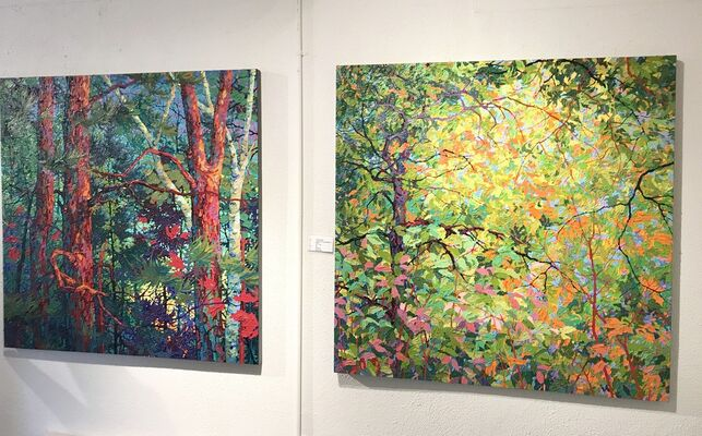 Balaam / Angus: Vivacious Color and Texture, installation view