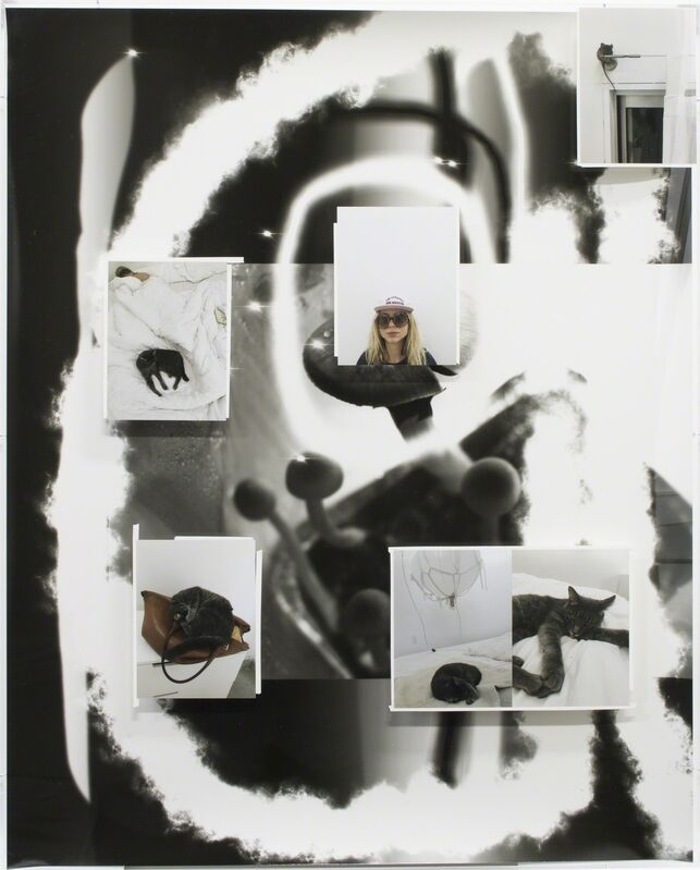 Fabian Marti, 'Tentacle Series (mouse)', 2016, Photography, Photogram, c-print on paper, white tape, Wilde