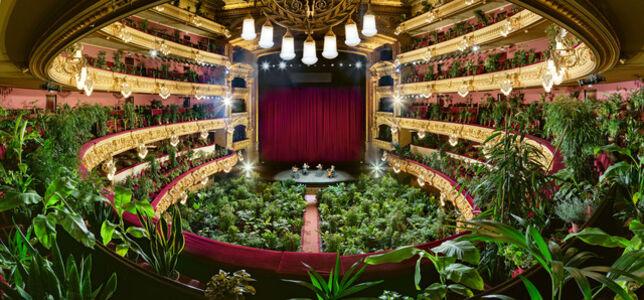 Eugenio Ampudia, 'Concierto para el Bioceno 7 / Concert for the Biocene 7', 2020