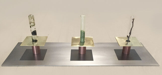Sabrina Merayo Nuñez, 'Hypothesis- DNA EXTRACTION PROCESS - state I-', 2018