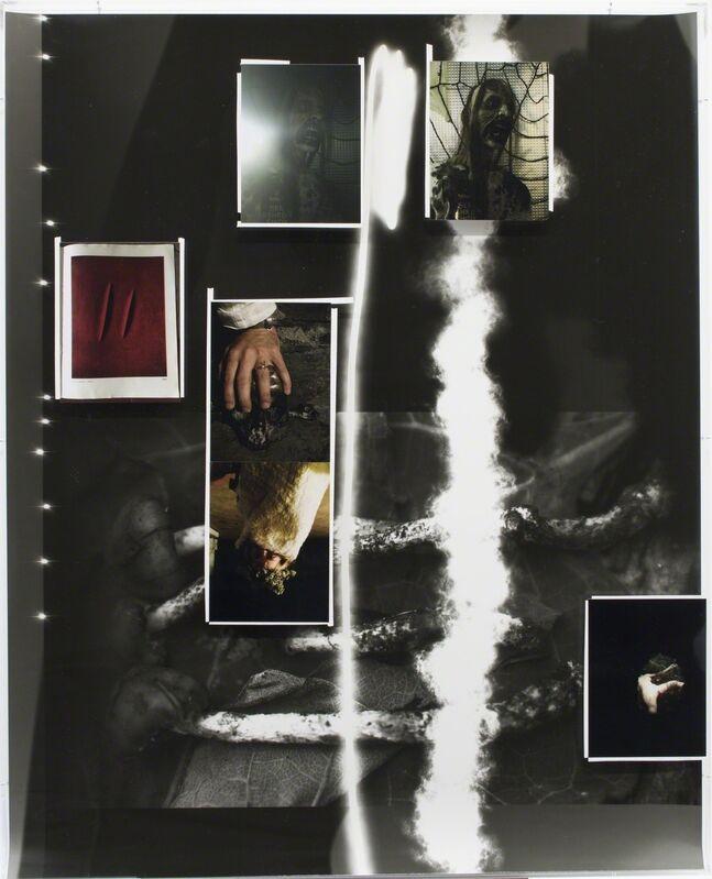 Fabian Marti, 'Tentacle Series (étant donné)', 2016, Photography, Photogram, c-print on paper, white tape, Wilde