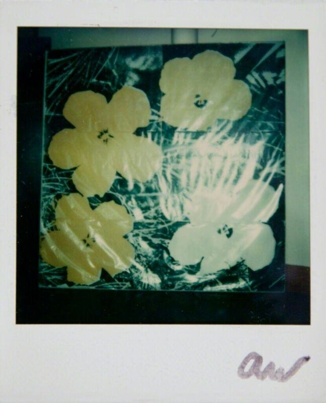 Andy Warhol, 'Andy Warhol, Flowers Silk Screen Print, Polaroid Photograph, 1976', 1976, Photography, Polaroid, Hedges Projects