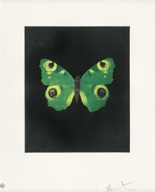 Damien Hirst, 'Fate', 2009, Print, Etching, Lougher Contemporary