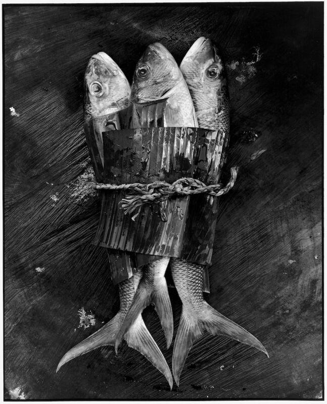 Gian Paolo Barbieri, 'Trio, Seychelles', 1998, Photography, Contemporary fine art digital inkjet print (pigment print),  29 ARTS IN PROGRESS gallery