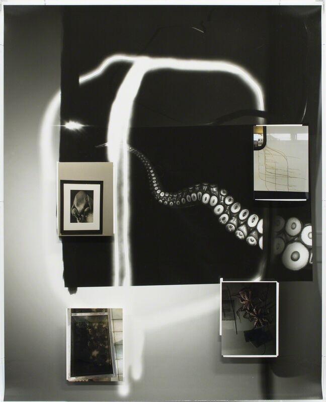 Fabian Marti, 'Tentacle Series (Père Ubu)', 2016, Photography, Photogram, c-print on paper, white tape, Wilde