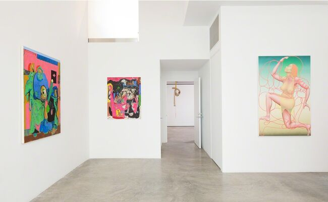 Phantom Limb, installation view