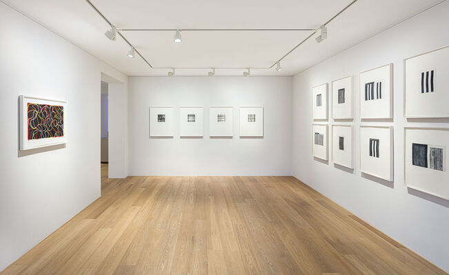 Brice Marden - Prints and Works on Paper, installation view