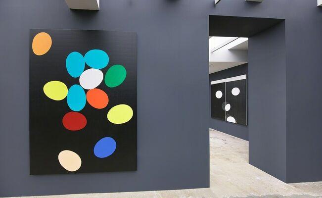 WARHOL, WOOL, GUYTON, installation view