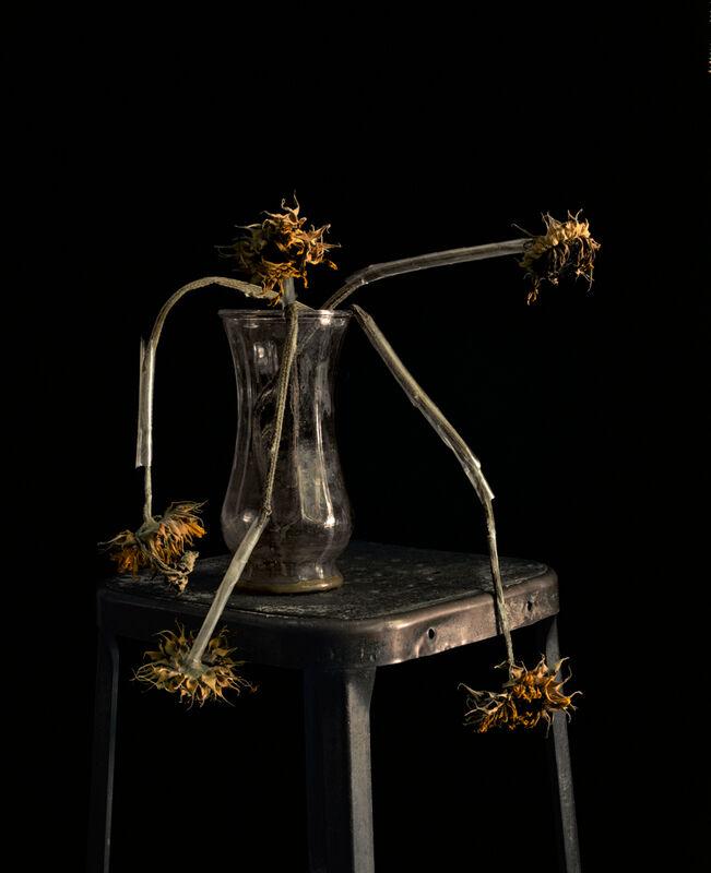 Brigitte Lustenberger, 'Flowers XXII', 2011, Photography, C-print, CHRISTOPHE GUYE GALERIE