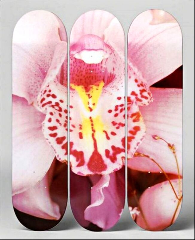 Nobuyoshi Araki, 'Orchid Triptych', ca. 2014, Sculpture, Set of (3) limited edition silkscreens on 7-ply Canadian maple wood skateboard decks, hand numbered, Alpha 137 Gallery Gallery Auction