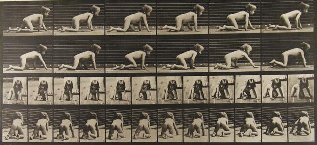 Eadweard Muybridge, 'Animal Locomotion', 1886