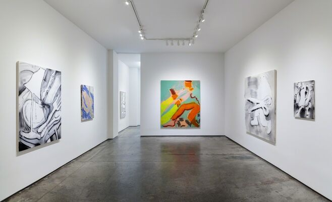 BRIAN SCOTT CAMPBELL and PATRICK SHOEMAKER: Hurry On Trouble, installation view