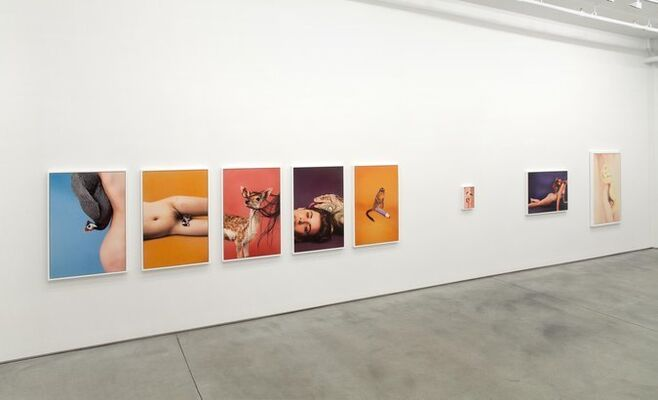 """Ryan McGinley - """"Animals"""", installation view"""