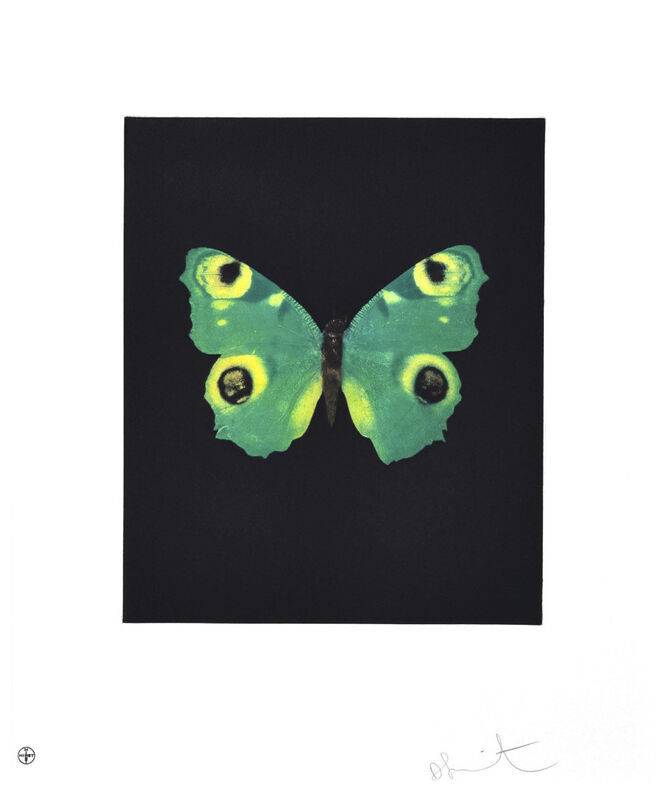 Damien Hirst, 'Fate (Green Butterfly)', 2009, Print, Etching, Oliver Clatworthy Gallery Auction