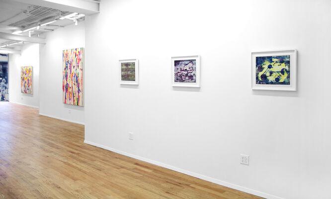 Jordan Broadworth : Terra Incognita, installation view