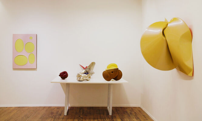 Sven-Ole FRAHM and Jeremy THOMAS, installation view