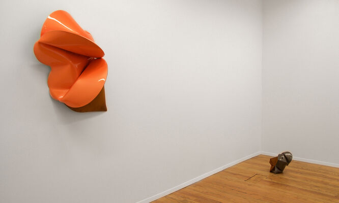 Jeremy Thomas: Tanked, installation view