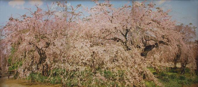 Ikeda Shu, 'No Time to Blink', 2010